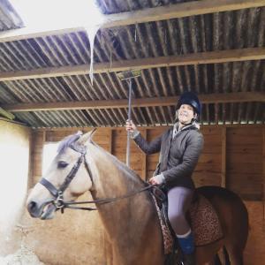 Horsey mum blog